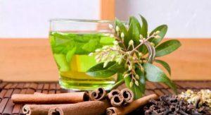 Soğuk Algınlığına Şifalı bitkiler